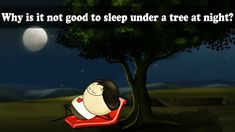 Topic: Respiration Why is it not good to sleep under a tree at night? Please don't sleep under that. Photosynthesis, Educational Videos, Sleep, Science, Rice Plant, Night, Kids Education, Exercises, School