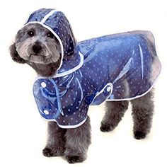 Alfie Pet by Petoga Couture - Alvin Raincoat (for Dogs and Cats) - Color: Blue, Size: Medium -- Visit the image link for more details.