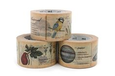 A MUST have for me! Mt Ex Masking Tape - Encyclopedia Animal - 30 mm x 10 m - MT MTEX1P36