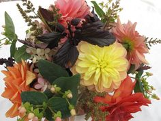 Flowers and foliage for fall