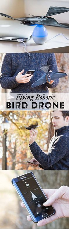 This life-like robotic bird flies up to 300+ feet and flaps its wings as it soars. Control the bird's flight with the Flying App—just tilt your smartphone to maneuver.