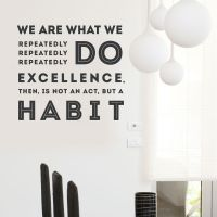We Are What We Repeatedly Do Wall Decal