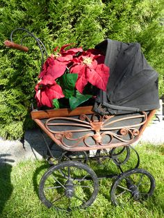 This vintage wicker doll pram combined with some silk poinsettias makes for a beautiful Christmas holiday display. Retro Christmas, Christmas Items, Christmas Holidays, Dolls Prams, Repurposed Items, Poinsettia, Beautiful Christmas, Wicker, Baby Strollers