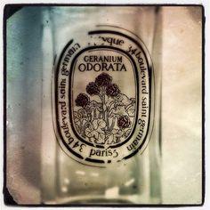 Vivre de souvenirs, faire comme si. Le nez sur un flacon, se dire que les géraniums refleuriront, que l'été reviendra. #parfum du jour: Géranium Odorata #Diptyque #fragrance of the day