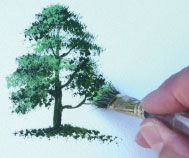 How to paint a tree using acrylic paints by Terry Harrison More how to paint items this website