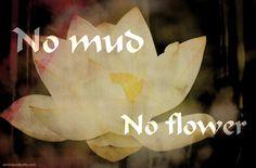 Kein Matsch - Keine Blume