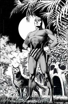 Marvel Comic Universe, Comics Universe, Marvel Comics, Comic Book Heroes, Comic Books Art, Phantom Comics, Wolf Images, Rock Poster, Celebrity Drawings