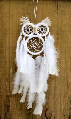 Owl Dream Catcher, Dream Catcher Decor, Dream Catcher Mobile, Dream Catchers, Los Dreamcatchers, Dreamcatcher Feathers, Weaving Projects, Craft Projects, Fall Crafts