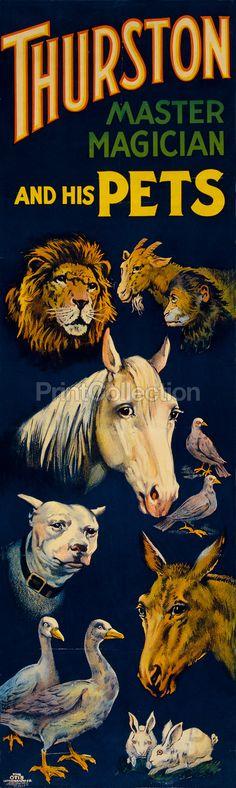 Thurston & his pets  magic poster
