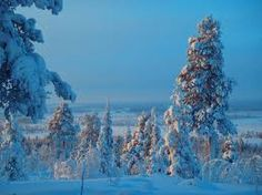 The Northern Swedish nature is quite spectacular. View over forest Swedish Lapland Time Of The Year, Winter Wonderland, Sweden, Christmas Tree, Holiday Decor, Nature, Outdoor, Inspiration, Teal Christmas Tree