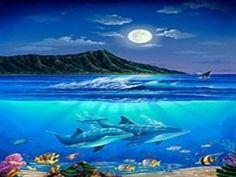 wyland hawaii