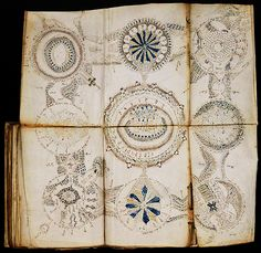 "For the love of Books...The Voynich Manuscript, a handwritten book thought to have been written between 1404./1438. Although many possible authors have been proposed, the author, script, and language remain unknown. It has been described as ""the world's most mysterious manuscript""."