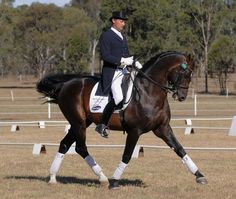 Dressage Photography or abuse? look at the horse pulling it's head to it's chest to avoid the pain from the bit