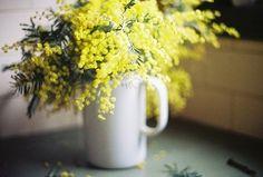 手近にあるマグカップを花瓶に代用しても十分お洒落なアレンジになります。