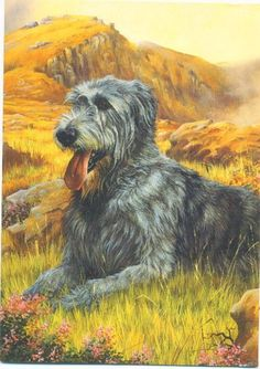 Highland Sentinels - Irish Wolfhound.  Detail from original painting by  Robert J. May