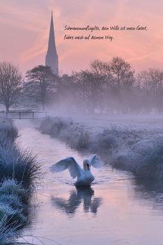 Schwanengeflügelte, dein Wille ist mein Gebet, führe mich auf deinem Weg.