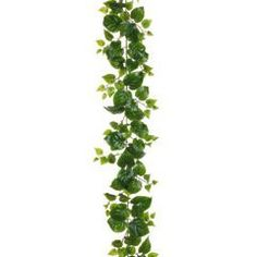 6' Puff Philodendron Silk Garland -Green (pack of 6), http://www.amazon.com/dp/B0162P1P00/ref=cm_sw_r_pi_awdm_gMu0wb13GZ7B5
