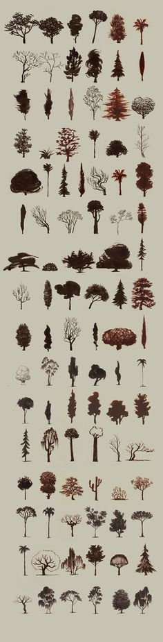 ÁRBOLES - TREES from Santiago Verdugo Alonso on Vimeo .