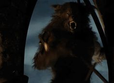 A GIF from the movie Cursed featuring the werewolf flashing a quite rude gesture.