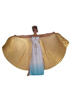 http://images.halloweencostumes.com/products/16669/1-2/gold-theatrical-wings.jpg
