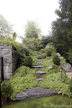 Garden path and hillside plantings - lovely lush overgrown feeling Hillside Garden, Hillside Landscaping, Garden Paths, Tableaux Vivants, Farmhouse Garden, New England Homes, House And Home Magazine, Dream Garden, Landscape Architecture