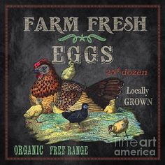 I uploaded new artwork to plout-gallery.artistwebsites.com! - 'Farm Fresh-jp2636' - http://plout-gallery.artistwebsites.com/featured/farm-fresh-jp2636-jean-plout.html