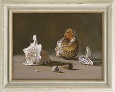 Stephen Rose (1960- ), Murex, cone, conch & auger shells (2012), oil on canvas, 44.5 x 60 cm. Reproduction early 18th century 'Salvator Rosa' frame, with painted finish