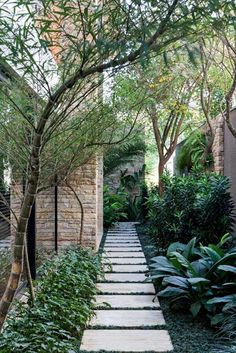 fabulous side yard garden design ideas and remodel 51 56 Fabulous Side Yard Garden Design Ideas And Remodel ~ 56 Fabulous Side Yard Garden Design Ideas And Remodel ~ Tropical Landscaping, Backyard Landscaping, Small Gardens, Outdoor Gardens, Side Yards, Garden Landscape Design, Garden Paths, Garden Inspiration, Beautiful Gardens