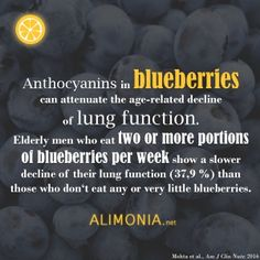 Blueberries are lung savers