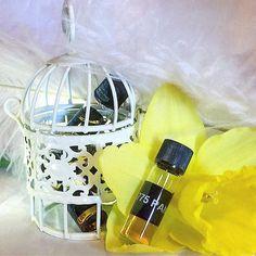 Perfume samples... #perfume #samples #natural #naturalbeauty #parfum #parfém #profumo #fragrance #scent #smallbusiness #entrepreneur #artisan #niche #indie #handmade #daffodils #birdcage #feathers #etsy #etsyshop #etsyseller #etsyfinds #etsystore #etsyuk #botanical #100percentnatural #nottingham #madeinengland #madeinnottingham