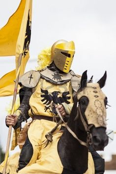 Other kids dreamed of being a superhero, I dreamt of being a knight lol