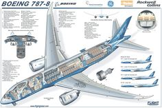 A schematic drawing of a Boeing 787 Dreamliner passenger jet. Description from av8rblog.wordpress.com. I searched for this on bing.com/images