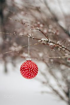 Christmas Decoration in the Snowy Outdoors