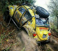 Fusca Cross, Vw Baja Bug, Volkswagen New Beetle, Car Camper, Bug Out Vehicle, Vw Vintage, Vw Cars, Modified Cars, Vw Beetles