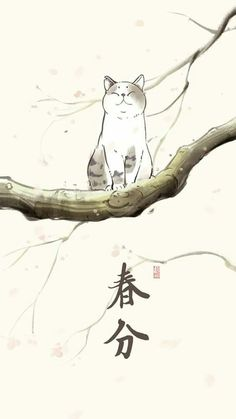 Cute neko (*'ω' *) Neko, Illustrations, Illustration Art, Image Chat, Japanese Cat, Cat Drawing, Chinese Art, Crazy Cats, Asian Art
