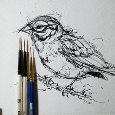 New brushes from ! The rate i go through these i can never have enough fine liners. by finchfight Bird Drawings, Cool Art Drawings, Art Drawings Sketches, Pen And Wash, Different Forms Of Art, Fine Line Tattoos, Pen Sketch, India Ink, Sketch Inspiration