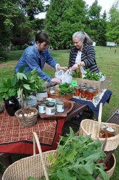 Start your own local garden & kitchen gift economy - Bainbridge Barter hosts open potlucks every Saturday morning in a public park. Each person comes with a basketful of their own surplus and leaves with a basketful of food for the coming week. Click through for details or to ask for help starting your own group.