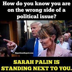 Funniest Memes Mocking Sarah Palin: The Wrong Side