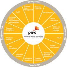 PWC Internal Audit Services - Risk Framework