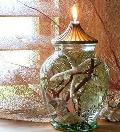 Seashell Oil Candle made with smokeless, odorless liquid paraffin with fiberglass wick that lasts a lifetime. need to make these for xmas presents! Window Candles, Candle Lanterns, Candle Jars, Candle Holders, Candels, Seashell Candles, Seashell Art, Seashell Crafts, Paraffin Candles