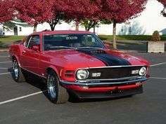 1970 Mustang Mach 1  this was my first car and first love... I will own one again.. so its back to work I go....