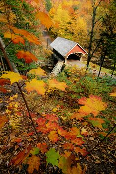 """New Hampshire, covered bridge and fall foliage,"" by Merrill Images. This autumn beauty leaves me breathless. Beautiful World, Beautiful Places, Beautiful Pictures, Autumn Scenes, Fall Pictures, Covered Bridges, New Hampshire, Belle Photo, Scenery"