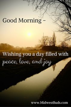Good Morning.  May your day be filled with peace, love and joy. Blessing