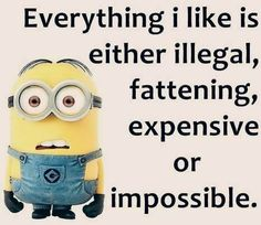 Everything I Like Is Either Illegal, Fattening, Expensive Or Impossible minion minions minion quotes minion quotes and sayings
