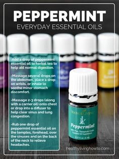 Essential Oil: Peppermint | healthylivinghowto.com