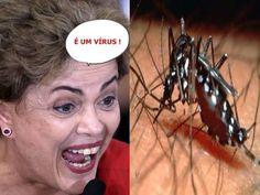 Para Dilma o mosquito 'Aedes aegypti' é um VÍRUS - Dilma e suas Gafes