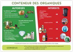 Quoi mettre dans le conteneur déchets organiques