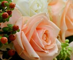 The beauty of the champagne colored Pearl Avalanche byMeijer Roses! (photo by LM Flower Fashion)