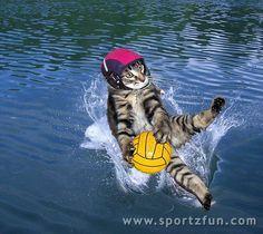 Nice Block....Goalie Kitty!!!
