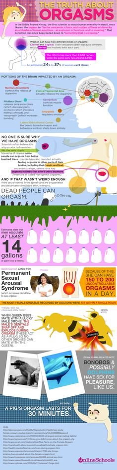 This infographic gives all the facts and information about an orgasm. It shows the portion of the brain that's impacted by an orgasm and other odd facts